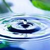Gratitude Unlocks Abundance